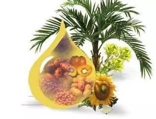 """棕榈油为""""垃圾食品""""平反啦"""